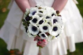 anemones flowers caring for diy wedding anemones whole blossoms guest post