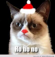 Christmas Grumpy Cat Meme - grumpycat