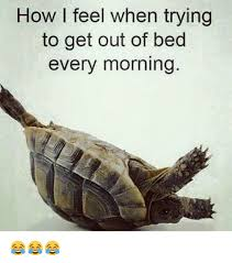 Get Out Of Bed Meme How I Feel When Trying To Get Out Of Bed Every Morning