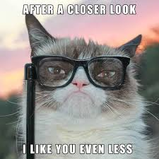 Original Grumpy Cat Meme - image 583088 grumpy cat know your meme