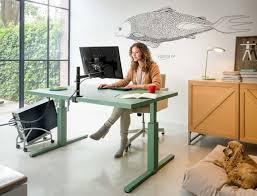 Langer Schreibtisch Bin Ich Fürs Home Office Geeignet Büromöbel Experte Büroratgeber