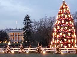 national christmas tree lighting tradition continues guardian