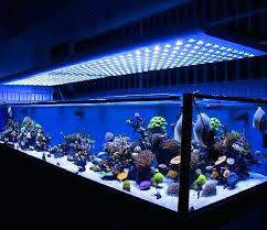 led reef lighting reviews aquarium led lighting reef aquarium led lighting reviews wecompany me