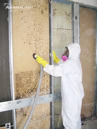mold removal edison nj mold remediation advantaclean