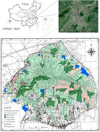 Google Map Types Remote Sensing Free Full Text Estimating Forest Aboveground
