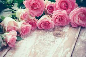 flowers roses flower meaning flower meaning