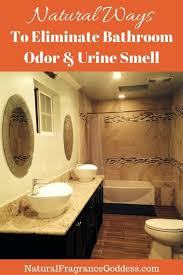 Best Odor Eliminator For Bathroom The Automatic Deodorizing Toilet Seat The Bathroom Odor Eliminator