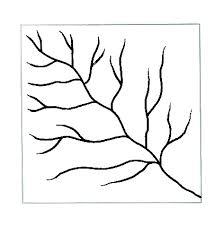definition pattern of drainage dendritic pattern golearngeography