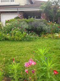 mortgage loans caroline gerardo home natural mosquito repellants