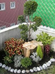 Backyard Corner Landscaping Ideas 9 Best My Garden Images On Pinterest Backyard Corner Garden And