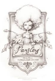 hanna belle the parsley faerie by thepicsees on deviantart