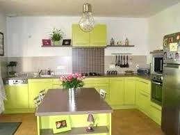 cuisine verte anis cuisine verte grise mur vert anis inspirant equipee supacrieur et