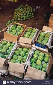 vashi market hma 85252 custard apple sitaphal fruit packed wholesale market