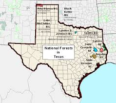 Texas forest images Usda forest service sopa texas gif