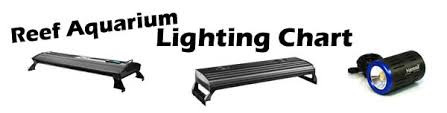 led aquarium lights for reef tanks marineandreef com reef aquarium lighting chart