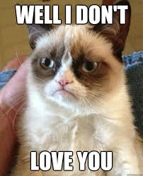 Love You Meme Funny - well i don t love you grumpy cat quickmeme