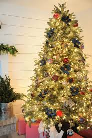 best 25 balsam fir tree ideas on pinterest balsam fir christmas