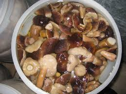 cepes cuisine salty cepes in logojsk store vego odo buy salty cepes