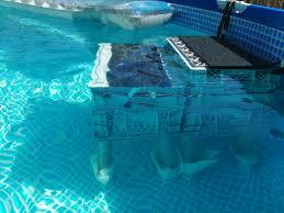 2016 diy swimming pool dog ramp dog stairs pooltreppe pool