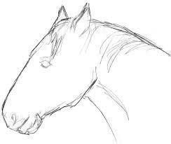 free illustration horse head horse head free image on pixabay