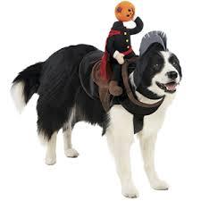 Target Dog Halloween Costumes Pet Halloween Costumes Cute Dog Cat Halloween Costume Ideas
