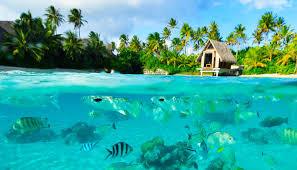Bora Bora On Map Of The World by Bora Bora Island Location Map U0026 Best Resorts Hotels Trips And