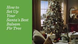 santa s best 6 5 rgb 2 0 green balsam fir tree page 1