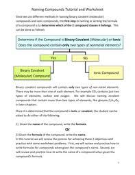 animal report template 1st grade forms fillable u0026 printable