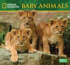 national geographic kids funny animals calendar 2018 calendar