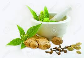 image of ayurvedic medicine preparation using herbs from kitchen