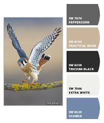231 best sherwin williams colors images on pinterest color