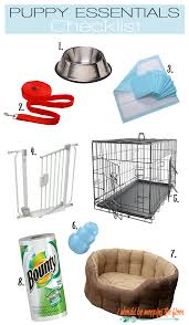 i should be mopping the floor new pet essentials checklist