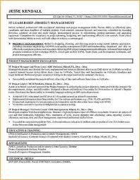 Examples Of Federal Resumes by Federal Resume Writers San Antonio