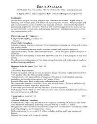 good sales resume examples Documents