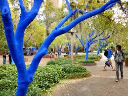 the blue trees are in gainesville visit florida