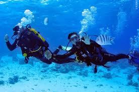 bora bora scuba diving in bora bora topdivetopdive