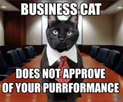 Purrrfect Meme - put a cat on it your guide to the purrfect facebook post civic