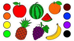 drawing fruits by water colors for learning colors and coloring