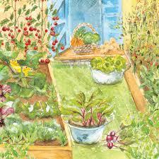 small family garden family favourites veg patch rocket gardens