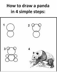 How To Draw Meme - how to draw a panda in 4 simple steps 8 8 meme on me me