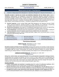 director of operations resume manufacturing resume template director of operations image