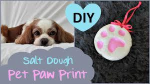 diy pet paw print salt dough