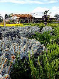 garden center seasonal nursery