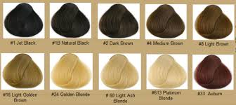 Types Of Hair Colour by Pictures All Types Of Hair Color Black Hairstyle Pics