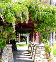 Eco Friendly Garden Ideas Building An Eco Friendly Hassle Free Deck With Garden Design Ideas