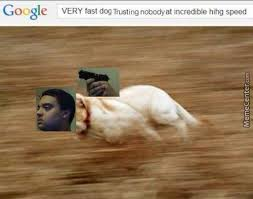 Fast Meme - very fast doggos running at incredible hihg speed daily dog memes