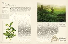 native plants of china fifty plants that changed the course of history fifty things that