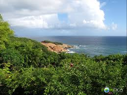 Sea Cliff Cottages Dominica by Cottages In Dominica A Virtual Dominica