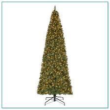 16 foot tree