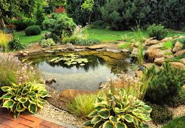 Garden Pond Ideas Exterior Water Garden Residential Pond Backyard Ponds Fish Pond